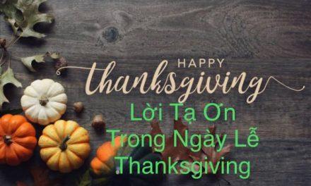 Văn Duy Tùng: Lời Tạ Ơn Trong Ngày Lễ Thanksgiving