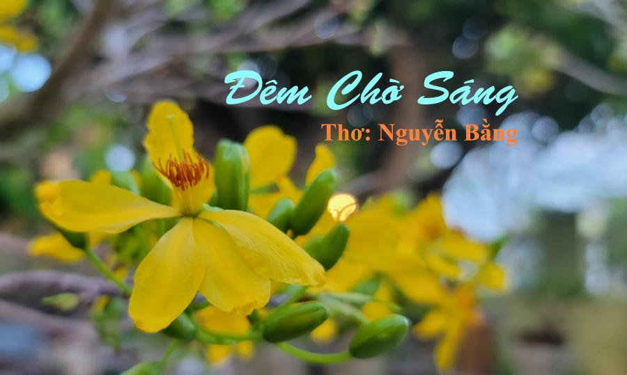Thơ Nguyễn Bằng: Đêm Chờ Sáng